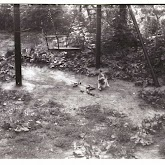n010-012-1966-tabor-sikfokut.jpg