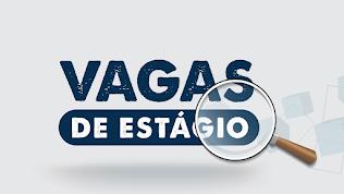 Fundação Mudes oferece 204 vagas de estágio com bolsas de até R$ 1,7 mil