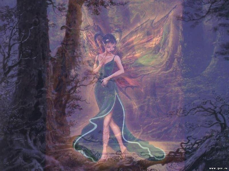 Look Of Hot Fairy, Fairies Girls 2