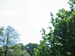 2009 maj sogneudflugt 008.jpg