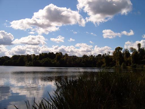 blenheim palace lake 6