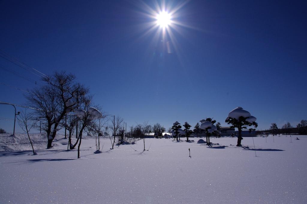 世界を照らす やさしい太陽