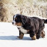 – Hårdt at gå i sand
