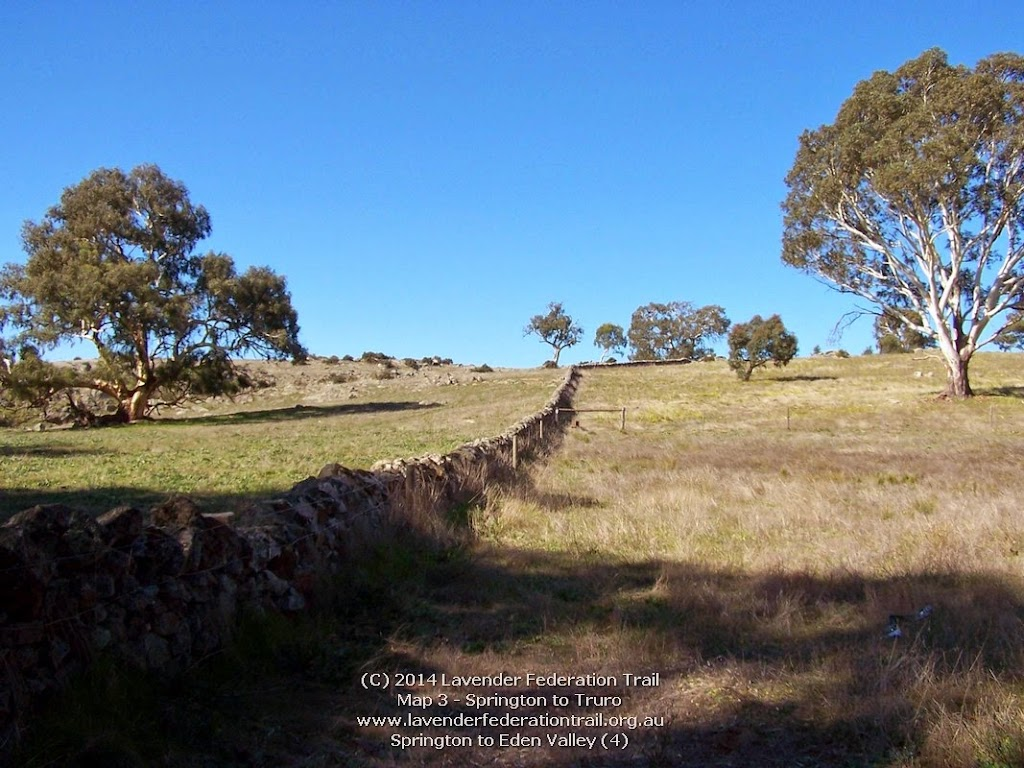 Springton to Eden Valley (4)