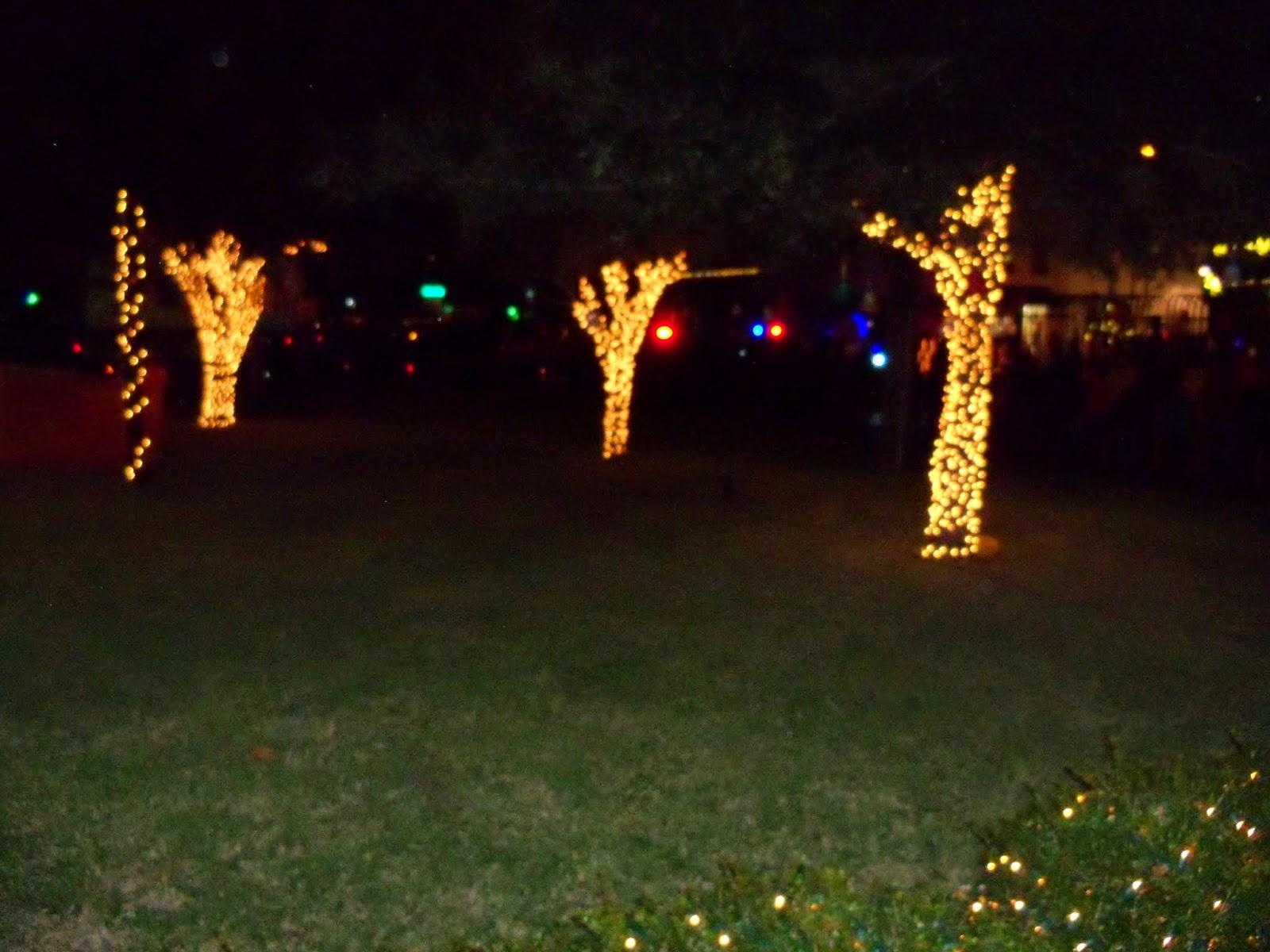Christmastime - 116_6430.JPG