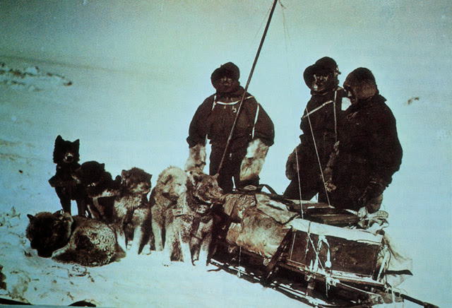 출발 전 - 메르츠와 니니스(왼쪽부터)가 출발 전에 개썰매를 앞에 놓고, 오른쪽은 머피