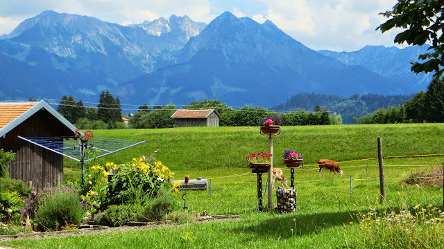 Bolsterlang Sonderdorf Spaziergang Blick auf Entschenkopf Nebelhorn Rubihorn Allgäu