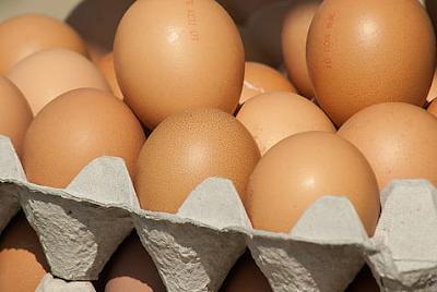 Size Leghorn chicken egg  -  weight about 45-60 grams