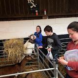 Stokley Farm April 2014