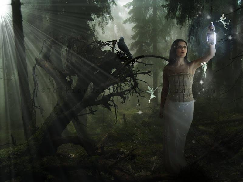 Fairies Fly On Light, Fairies Girls 2