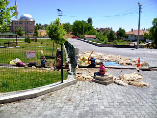 P1050486-Adana-1
