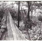 n010-011-1966-tabor-sikfokut.jpg