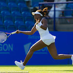 Sloane Stephens - AEGON International 2015 -DSC_2626.jpg