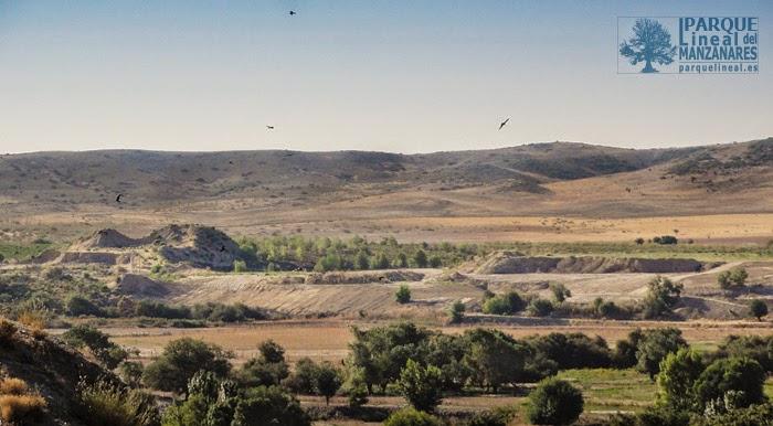 Vista actual del arenero de Preresa y su entorno.
