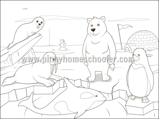 polar animals coloring pages - the pinay homeschooler arctic theme