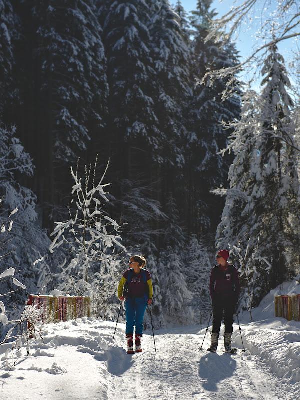 Incredibil de multa zapada chiar si la plecarea din Valea Azugii.