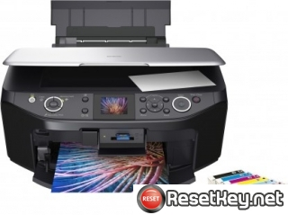 Epson RX585 Waste Ink Counter Reset Key