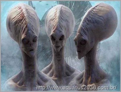 Especies alienigenas lutam pelo controle da terra