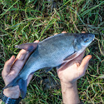 20140612_Fishing_BasivKut_011.jpg