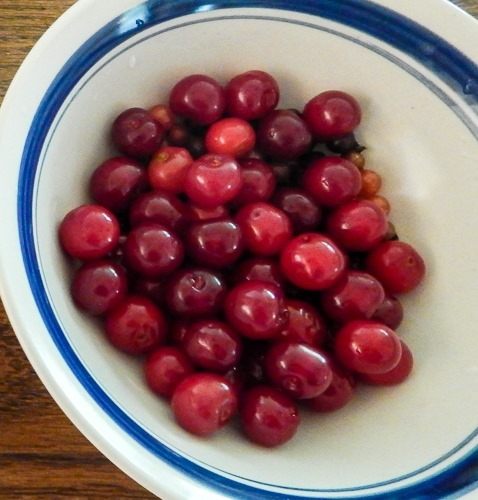 Northstar Cherries and Currants