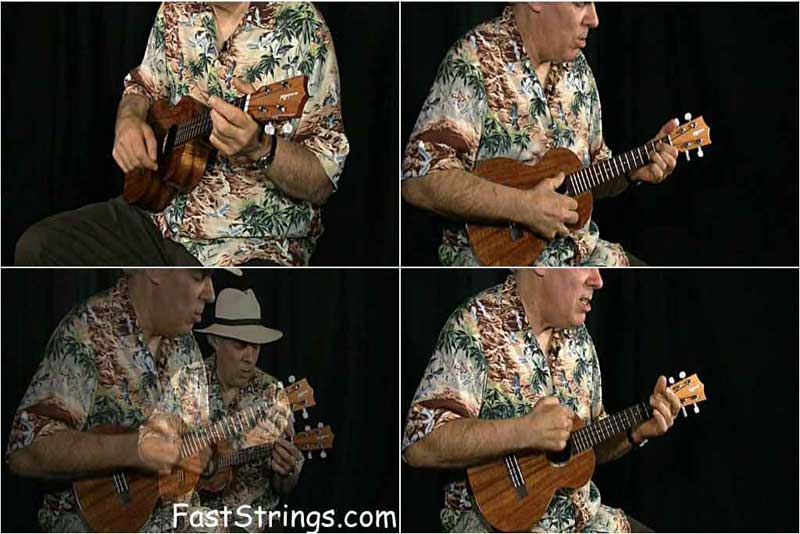 Fred Sokolow - Complete Beginners Ukulele Guide