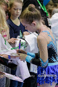 Han Balk Gym Gala 2015-2630.jpg