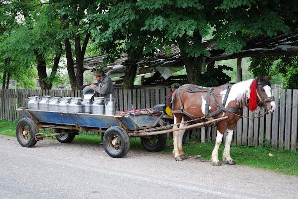 Milchwagen mit einem PS