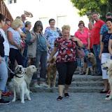 7. Juni 2016: On Tour in Neustadt a.d. Waldnaab - Neustadt%2Ban%2Bder%2BWaldnaab%2B%252817%2529.jpg
