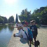 More Yr6 photos from the 'Estufa fria'