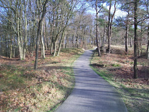 Photo: Soestduinen