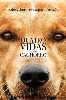 Quatro Vidas De Um Cachorro - (Torrent)