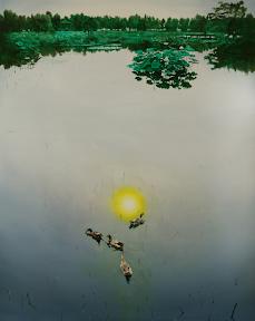공성훈, 오리와 연꽃, 2008, 227.3x181.8cm, Oil on Canvas 2