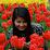 thandar kyi's profile photo
