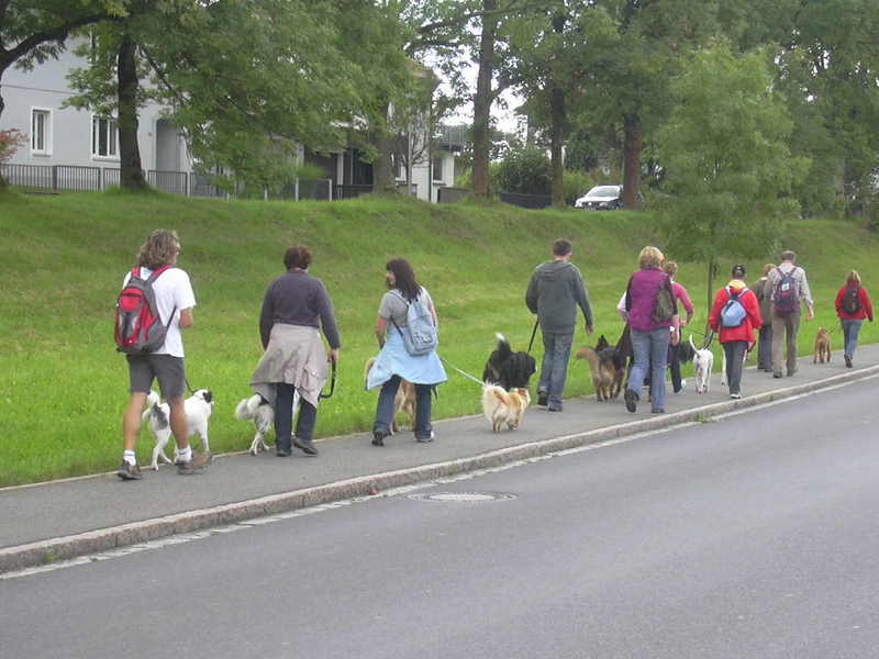 20100905 Hundespaziergang 34 - HS_34%2B%25284%2529.JPG