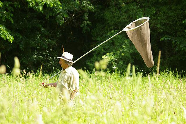 Entomologiste aux Hautes-Lisières, 5 juin 2010. Photo : J.-M. Gayman