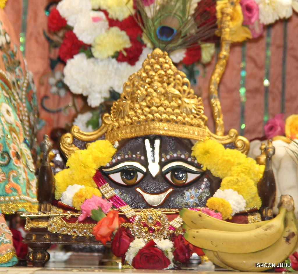ISKCON Juhu Sringar Deity Darshan on 19th Jan 2017 (11)