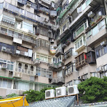 typical Taiwanese living in Beitou, T'ai-pei county, Taiwan