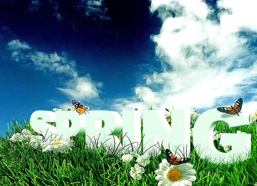 3d Spring Wallpaper
