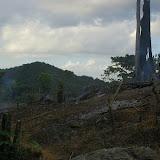 Ladang à l'ouest de Sukau. 11 août 2011. Photo : J.-M. Gayman