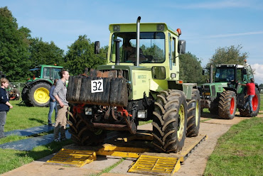 Zondag 22-07-2012 (Tractorpulling) (239).JPG