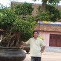 Ảnh hồ sơ của Hường Lê Văn