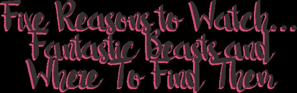 5 Reasons Fantastic Beasts