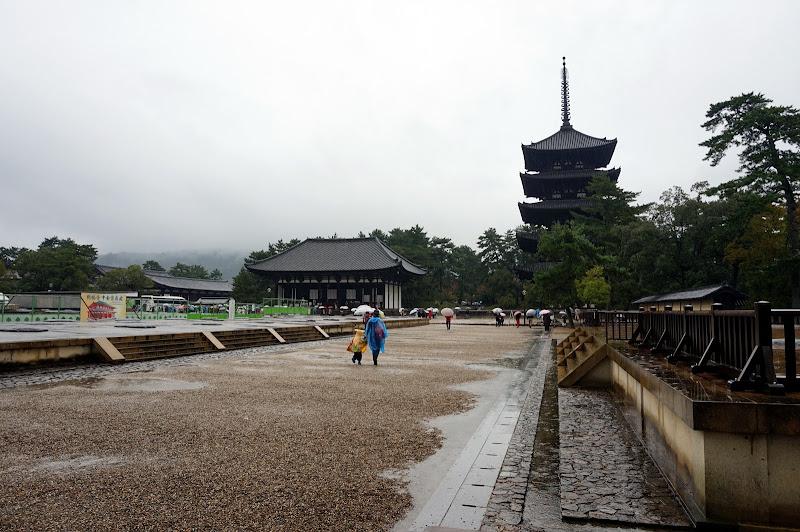 DSC07029 - Rainy Nara