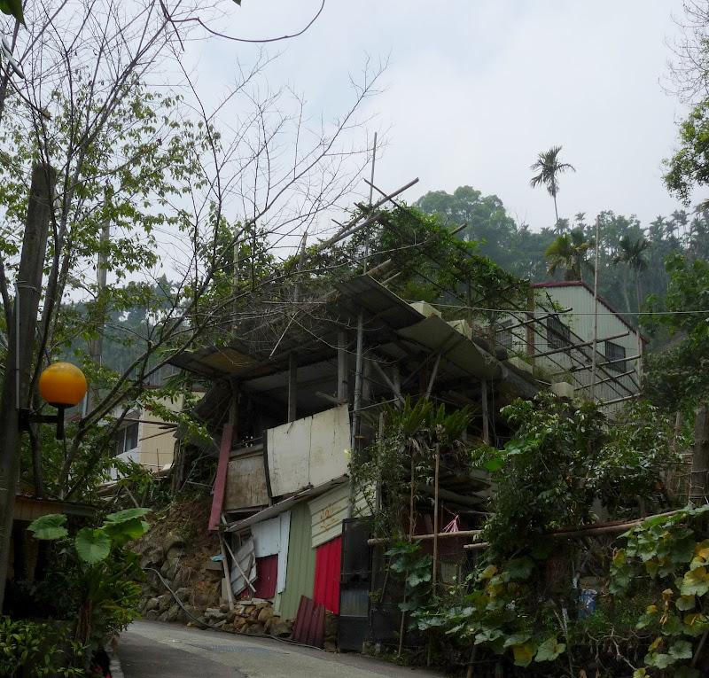 TAIWAN.Dans la région de Nantou, au centre de Taiwan - P1100248.JPG