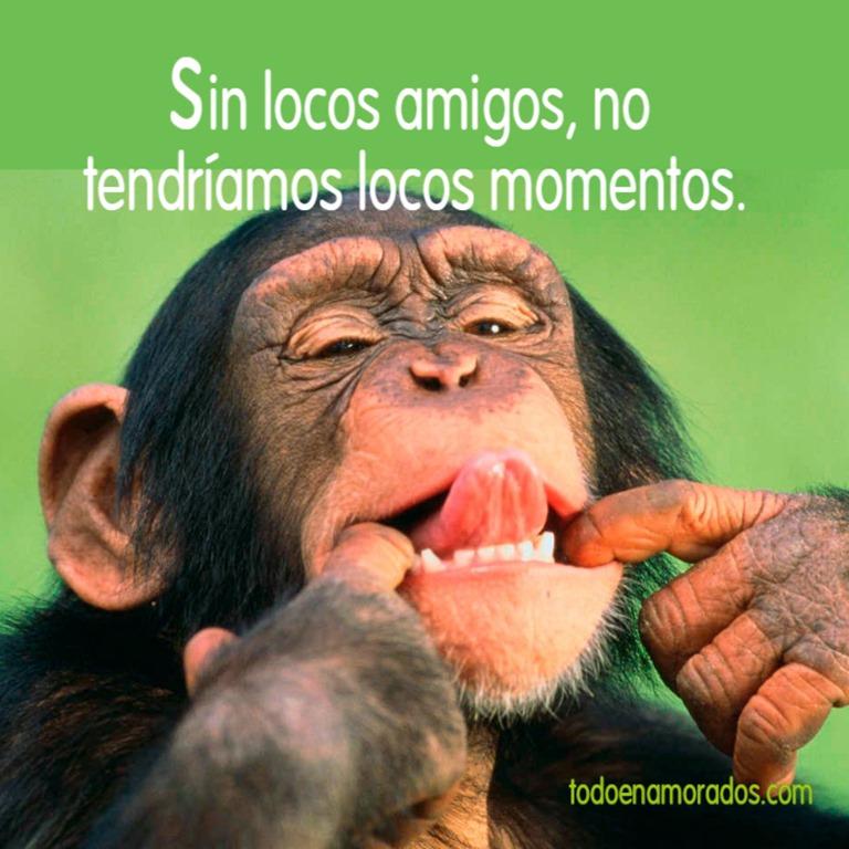 [Sin+locos+amigos%2C+no+tendr%C3%ADamos+locos+momentos.%5B2%5D]