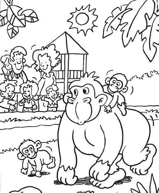 Moderno Zoología Para Colorear Imágenes - Páginas Para Colorear ...