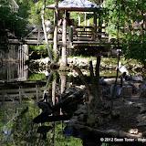 04-07-12 Homosassa Springs State Park - IMGP4568.JPG