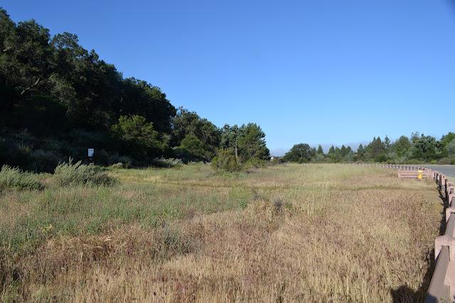 Oakbrook View Trail