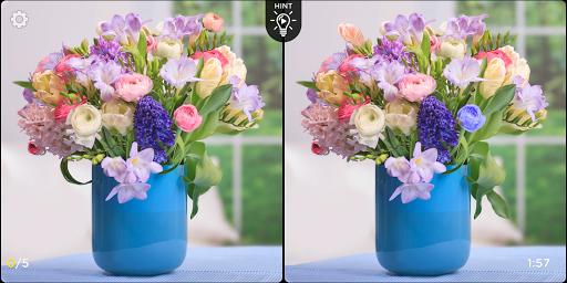 Spot the Difference - Insta Vogue 1.2.1 screenshots 19