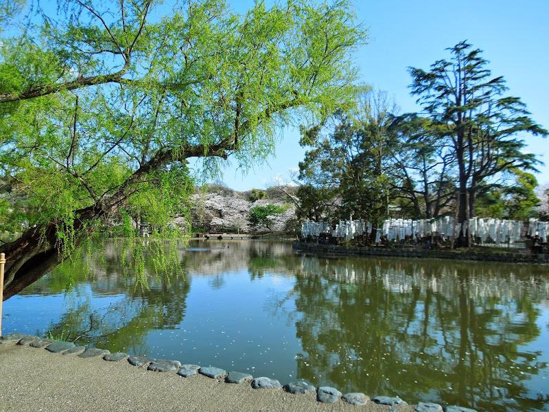 2014 Japan - Dag 7 - danique-DSCN5877.jpg